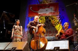 Jazzinec, autor: Miloš Šálek
